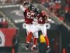 The Falcons - D. Franks (10)