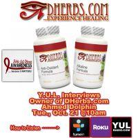 Y.U.L. Interviews Ahman Dolphin